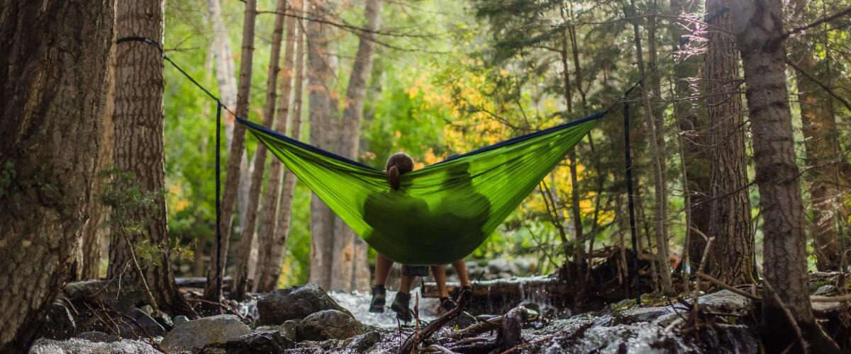 Two people resting in hammock in the forest