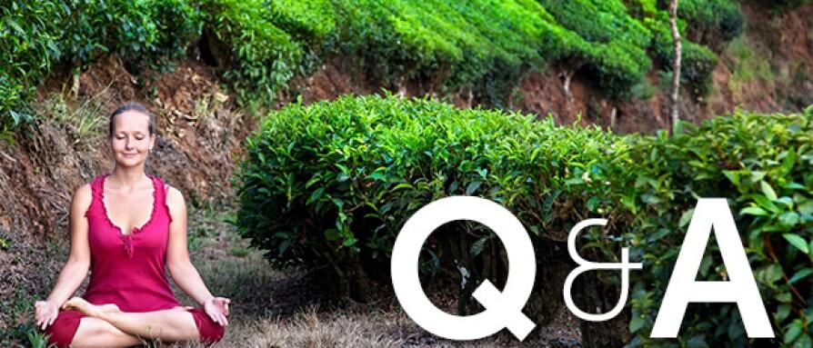 blogpost-featuredimage-qa.jpg