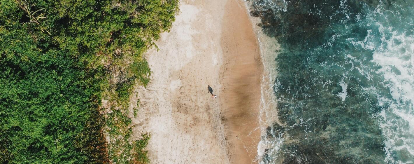 Aerial image of beach