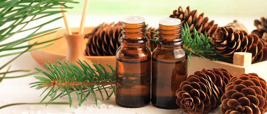 pine cones, pine needles, essential oils