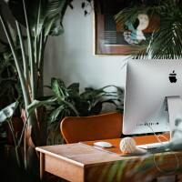 Work desk surrounded with plants