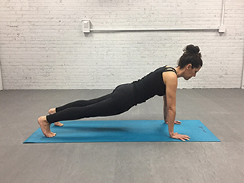 plank-pose-v4.jpg