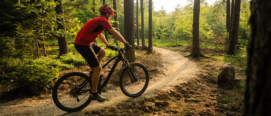 A man riding a bike on a path in the woods