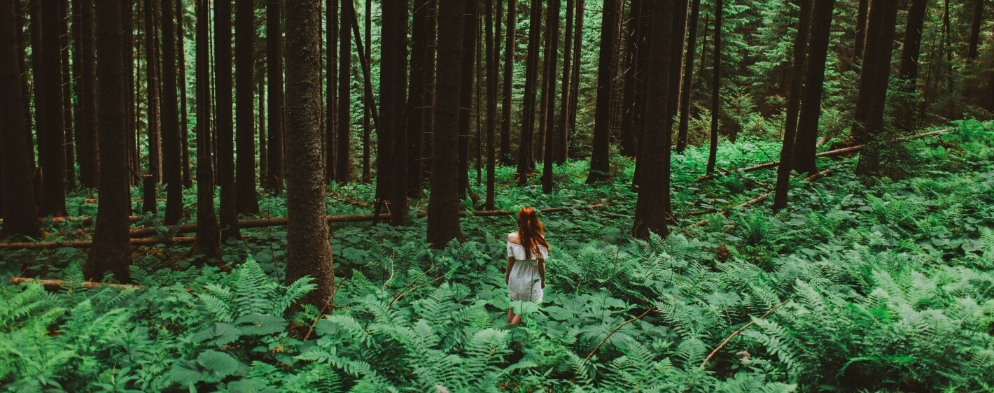 Young Caucasian Woman in white dress walking in the green forest in mountains